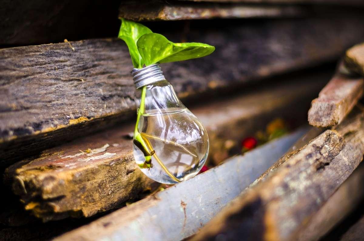 España: Educación e Innovación ¿Somos competitivos a nivel internacional?